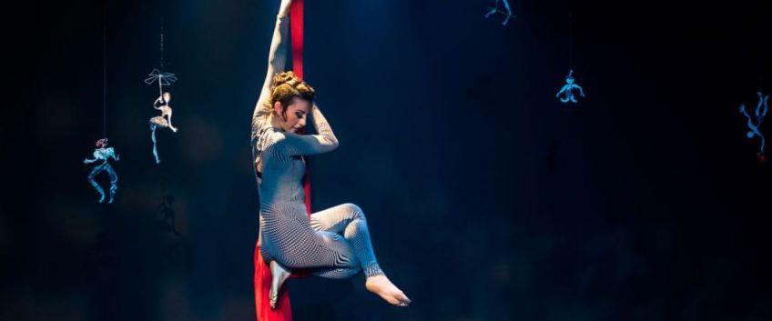 Nouveau partenariat avec la Biennale Internationale des Arts du Cirque