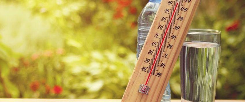 Travail et chaleur d'été