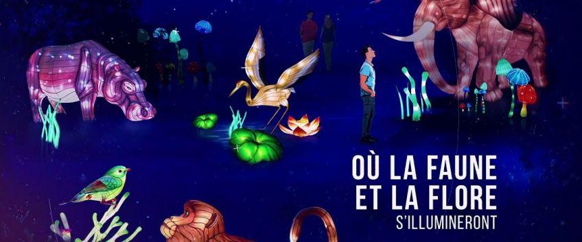 A la découverte des lumières légendaires de Chine au Parc Longchamp
